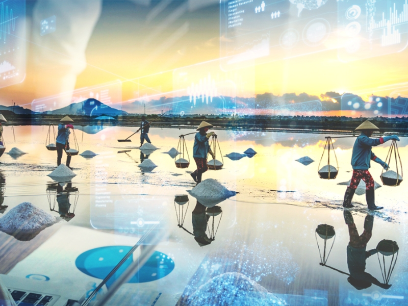 Challenges and Opportunities in ASEAN's Digital Economy